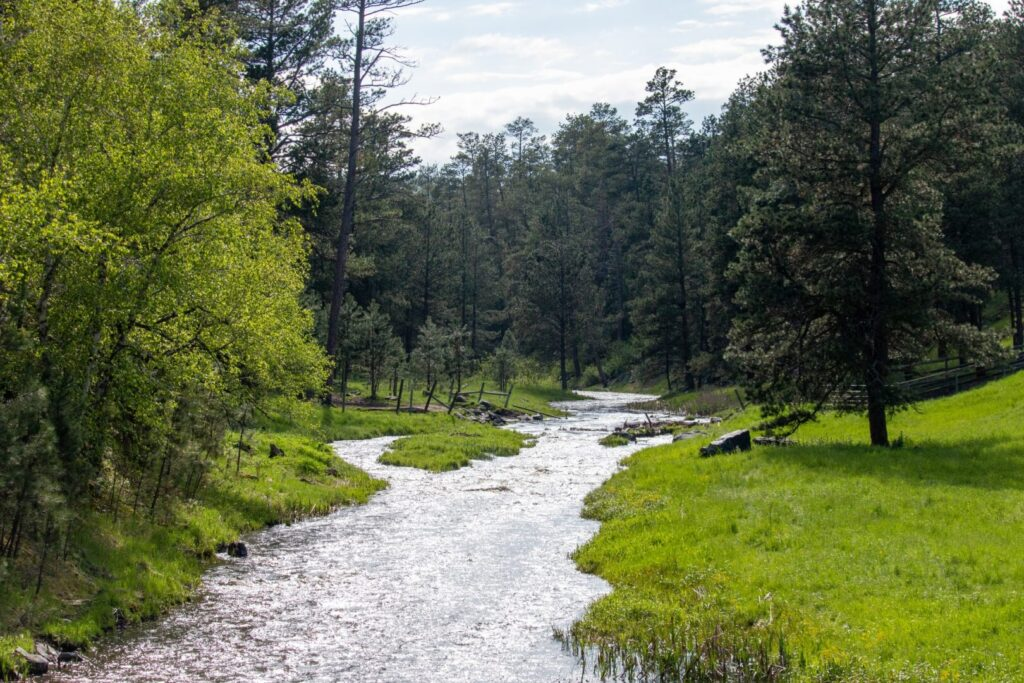 A small river flows past green, grassy fields and a stand of tall green trees.