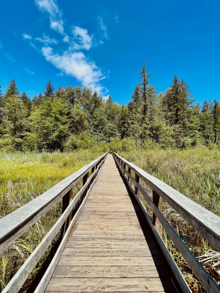 wildwood recreation site in oregon