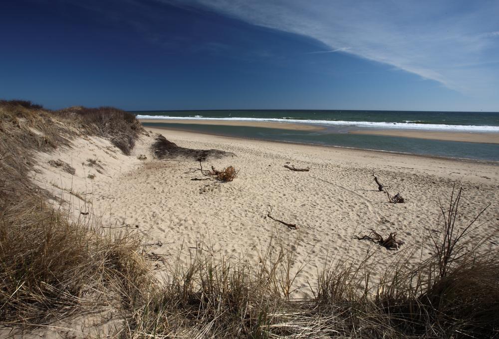 Coast Guard Beach, Cape Cod, Massachusetts, USA