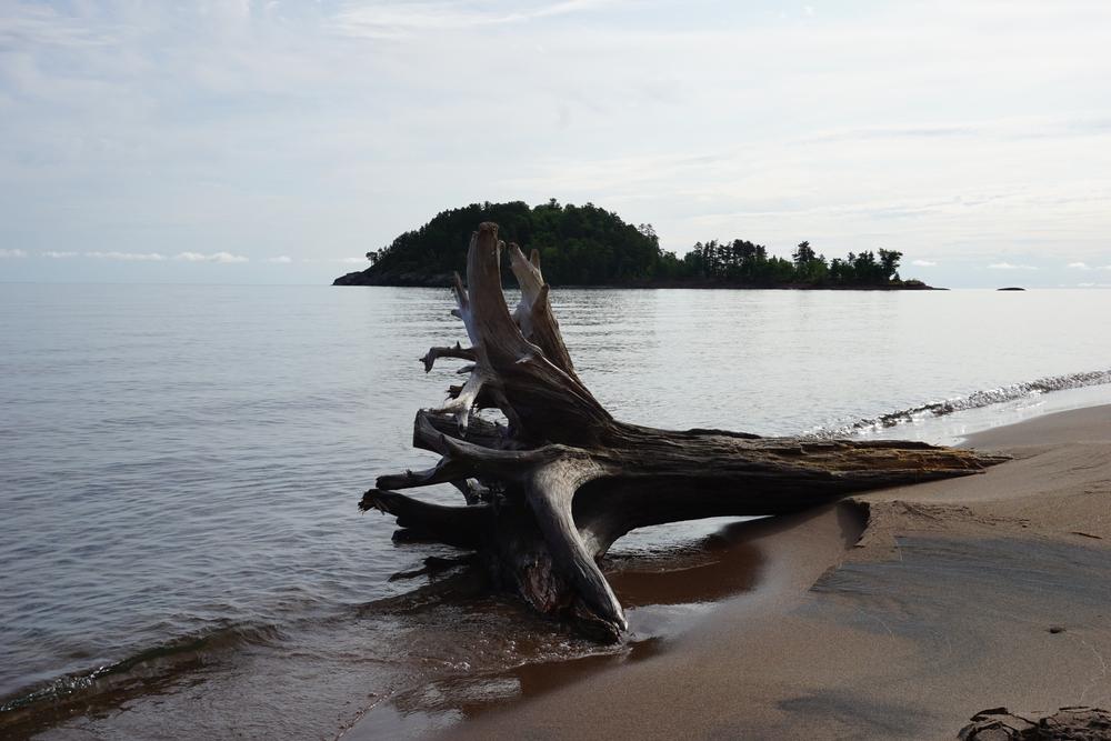 Little Presque Isle with Driftwood Scene near Marquette, MI