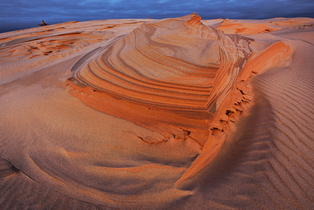 Landscape of the Silver Lake Sand Dunes at dawn, Silver Lake State Park, Michigan, USA