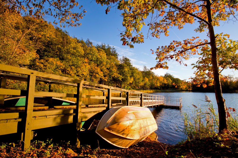 A row boat leans against a wooden pier in a lake surrounded by autumn trees under a bright blue sky