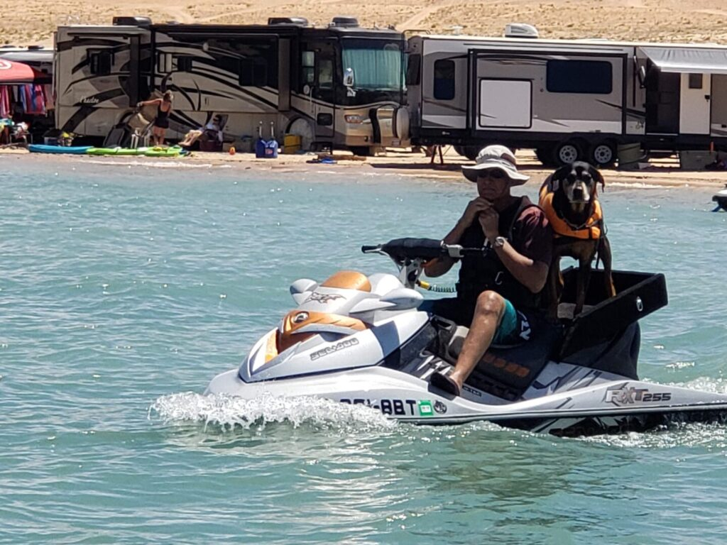 Man and dog on a jet ski in front of RVs