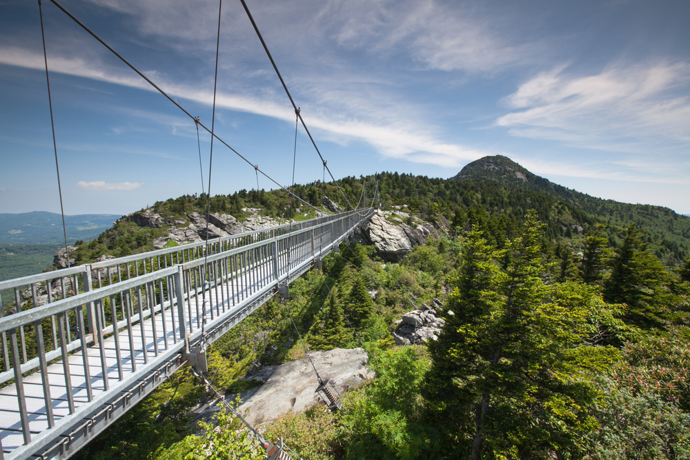 Gray metal bridge with cables stretches to a distant mountainside with rocks and tall trees