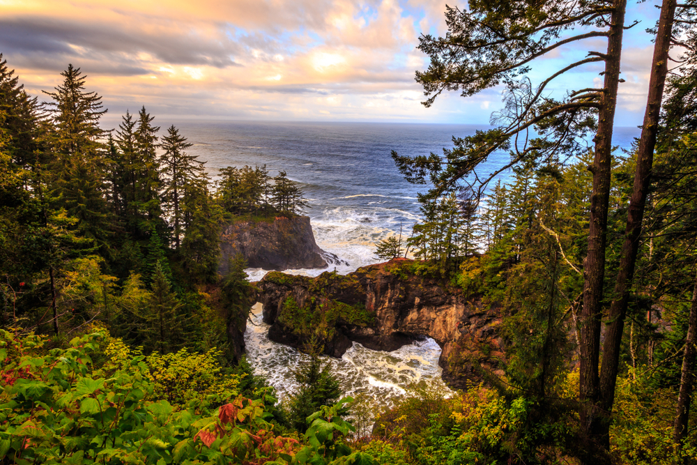 Tall green trees grow on the hillsides. Rocky cliffs create a cove. The ocean can be seen in the distance.