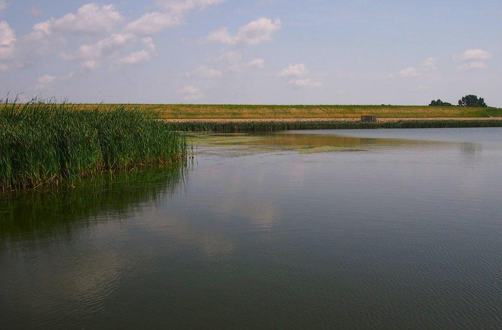 Lake Renwick north dakota