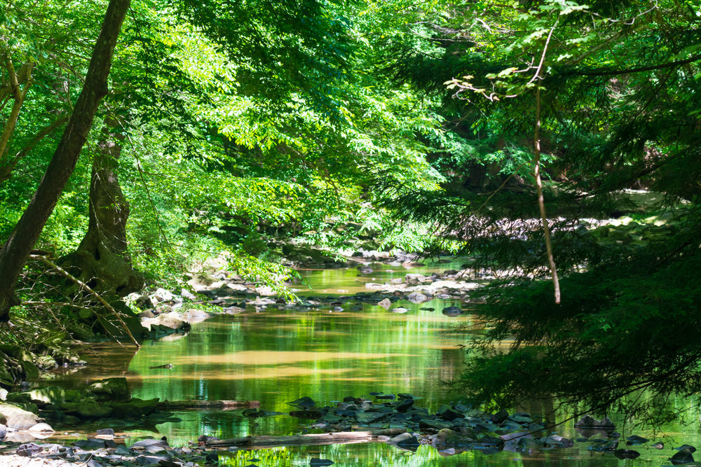 A scenic view of Turkey Creek, located in the Shawnee State Park, Friendship, Ohio.