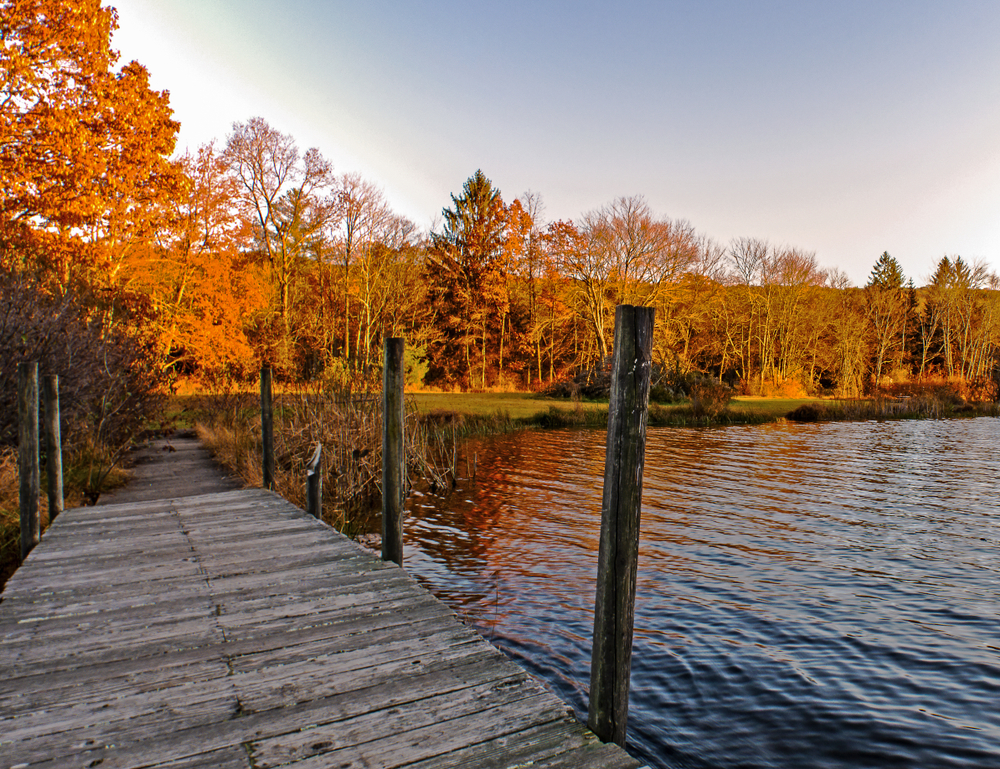A wooden dock floats on a blue lake surrounded by orange and yellow trees.