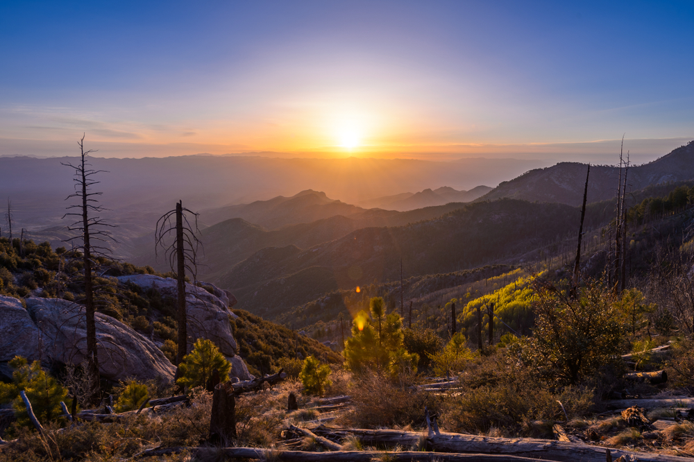 The sun rises above Mt. Lemmon, AZ.