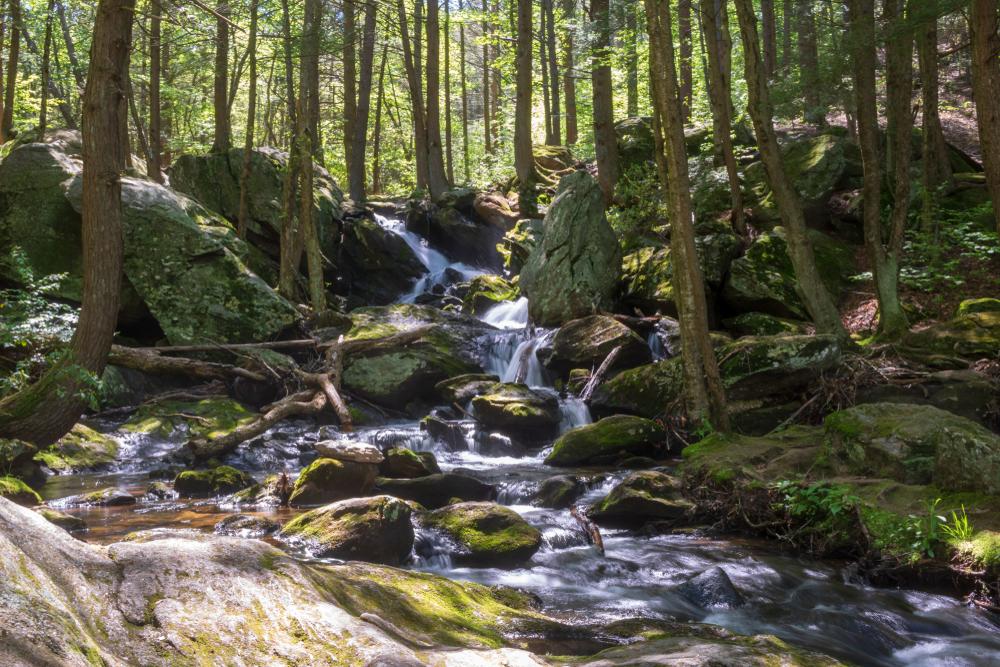 Upper tier of Buttermilk Falls