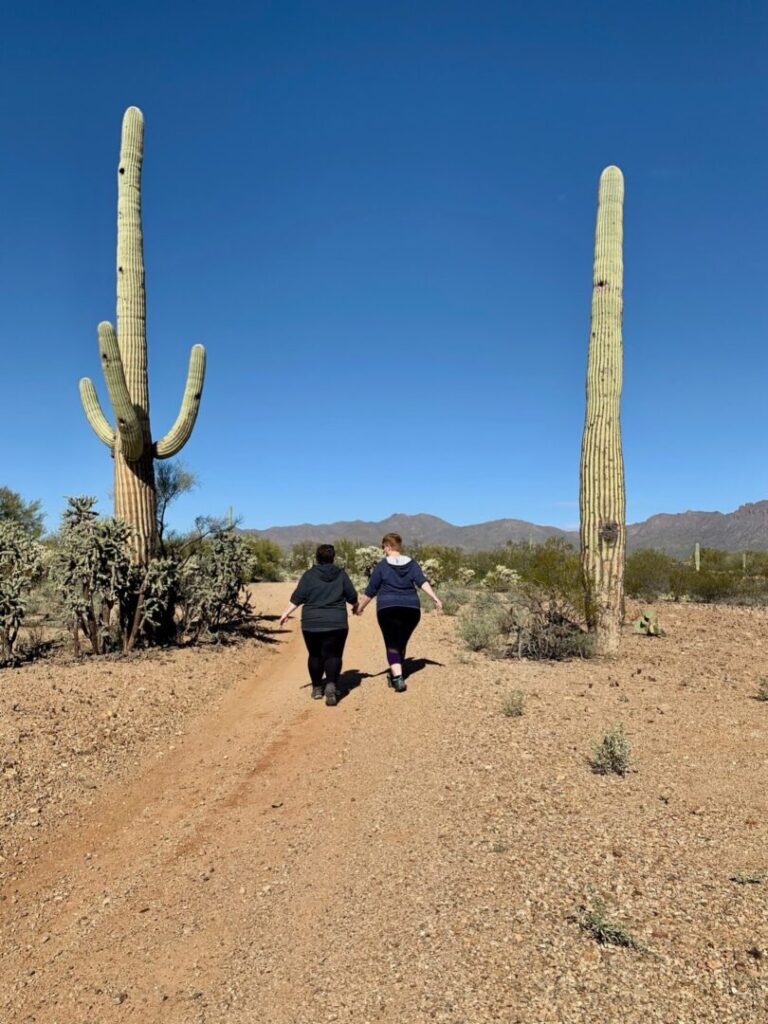 Couple walks in desert between two very tall cacti