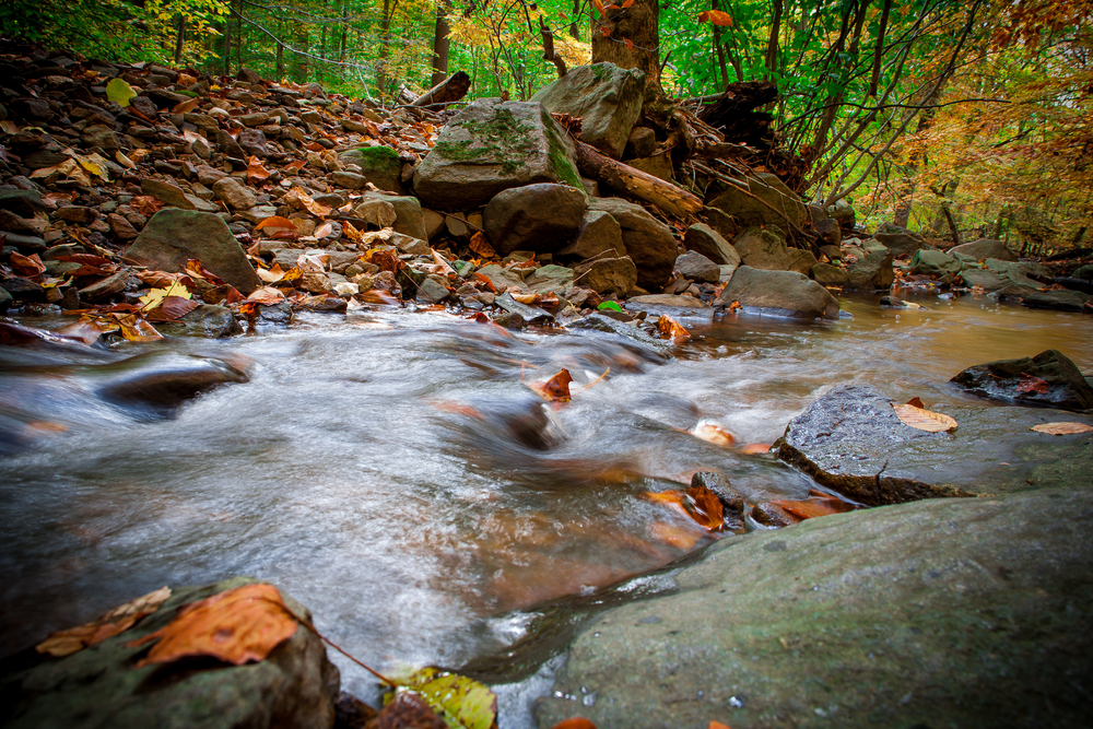 Water streams over the rocks at a stream in Brandywine Creek State Park, Delaware