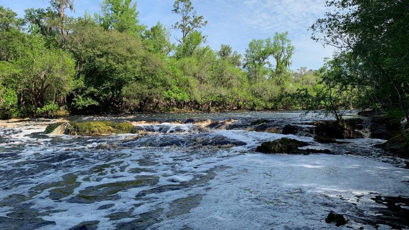 Big Shoals State Park Florida