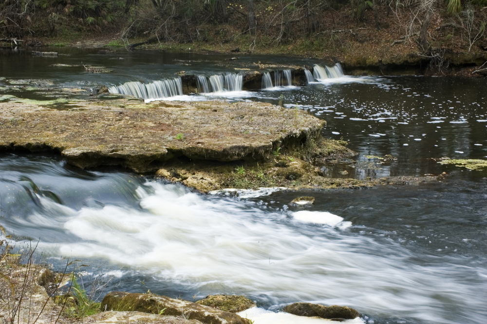 Low water flow on Steinhatchee Falls makes for a dramatic view of the limerock bed.