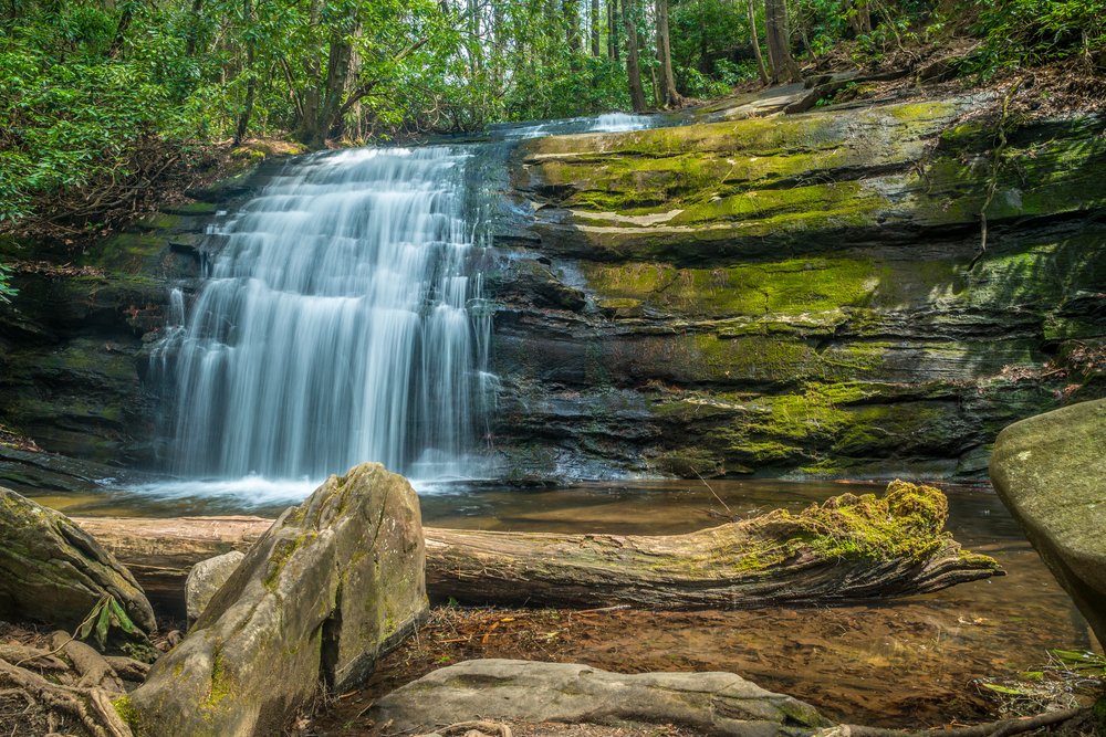 The beautiful and scenic waterfall Long creek falls in the north Georgia mountains with rocks boulders and a log and surrounding forest in springtime