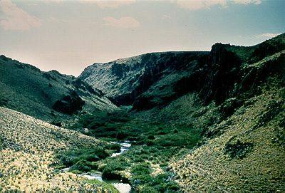 Salmon Falls Creek Canyon