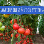 cift-agribusiness-food-systems