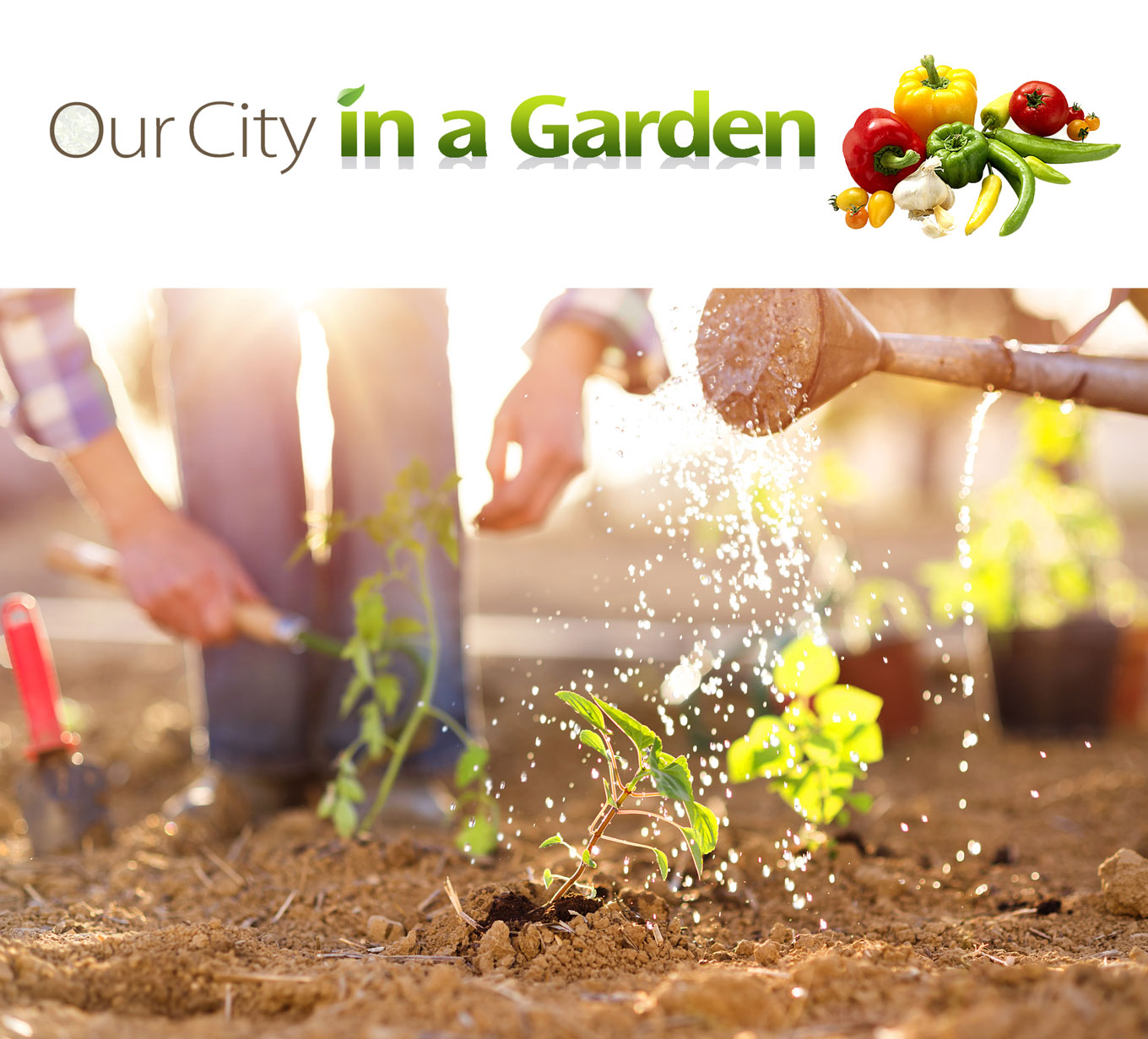 CIFT-our-city-in-a-garden