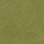 Color-Category-Swatch-Green