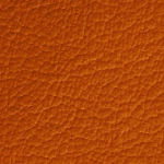 Color-Category-Swatch-Orange