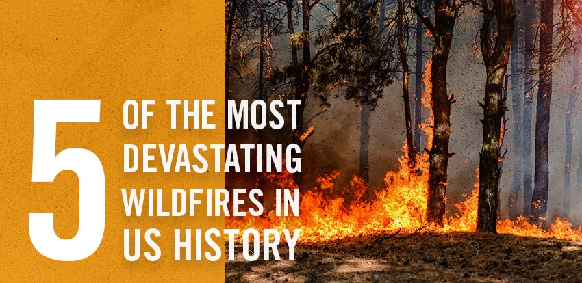 Fire-Dex-Devastating-Wildfires