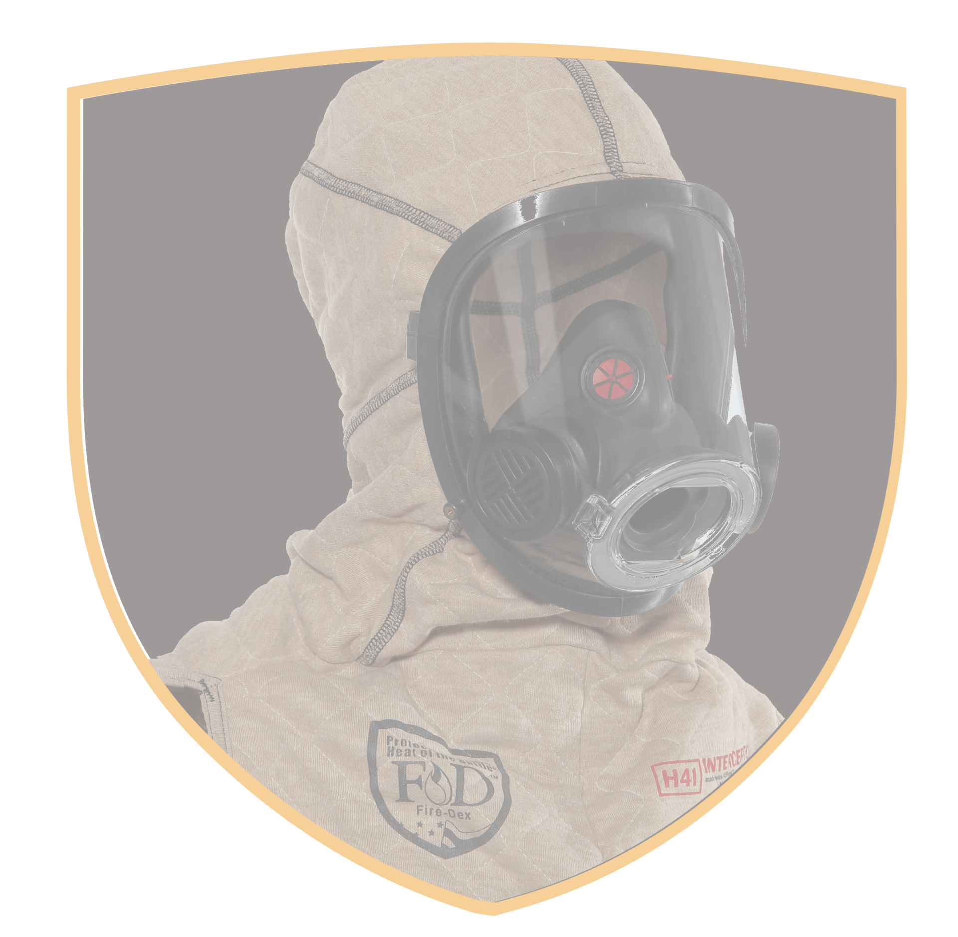 FD_InterceptorPackage_Shields_transparent-01-01