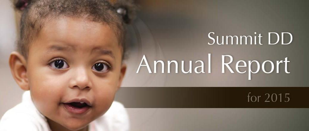 Summit DD Annual Report for 2015