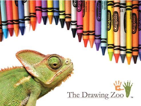 Drawing Zoo Art Meets Science