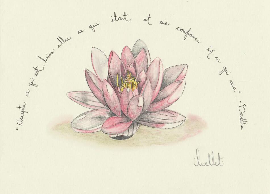 Dessin Fleur Lotus Facile