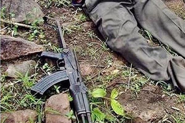 Breaking News: झारखंड के चाईबासा में मुठभेड़, सुरक्षाबलों ने तीन नक्सलियों को मार गिराया