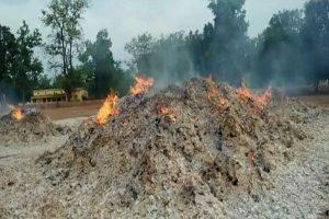 छत्तीसगढ़: कांकेर में नक्सलियों का तांडव, करीब 44 लाख रूपए का तेंदूपत्ता जलाकर किया खाक
