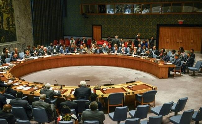UNSC में भारत ने पाकिस्तान को सुनाई खरी-खोटी, कहा- पड़ोसी मुल्क की 'सरपरस्ती' में हैं दाउद जैसे आतंकी