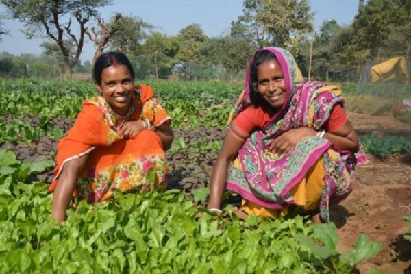 झारखंड: कुपोषण मिटाने के लिए महिलाओं ने शुरू की ये नई पहल, मिली आर्थिक आजादी