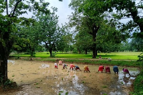 खातिरदारी से दिल जीत लेता है सारंडा के जंगलों के पास बसा ये गांव, देखें तस्वीरें…