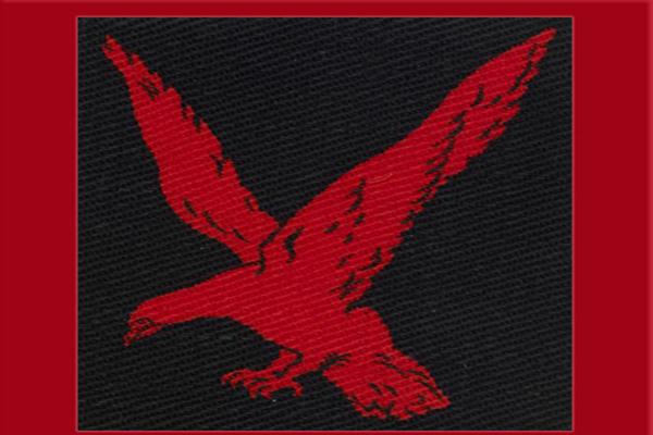 भारतीय सेना की सबसे पुरानी इन्फेंट्री रेड ईगल डिवीजन, जानें इसकी खासियतें