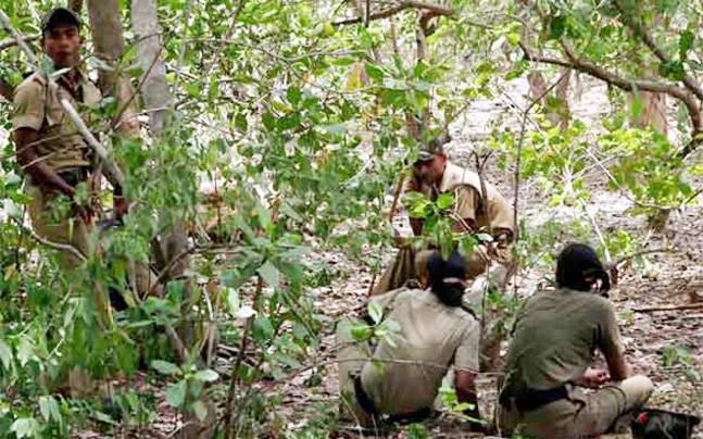 बस्तर के नक्सलियों में कोरोना वायरस का खौफ, जंगलों में छिपे नक्सली इलाज के लिए हो रहे मोहताज
