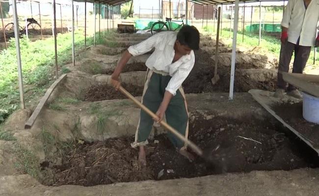 Jammu-Kashmir: राज्य में बदलेगी किसानों की किस्मत, इस यूनिवर्सिटी ने की नई पहल