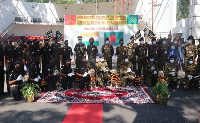 भारतीय सेना ने बांग्लादेश सेना को दिए 20  सैन्य घोड़े और 10 विशेष कुत्ते, जानें क्या है खासियत