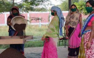 Chhattisgarh: प्रदेश सरकार की योजनाओं से आ रही विकास में तेजी, महिलाएं हो रहीं आत्मनिर्भर