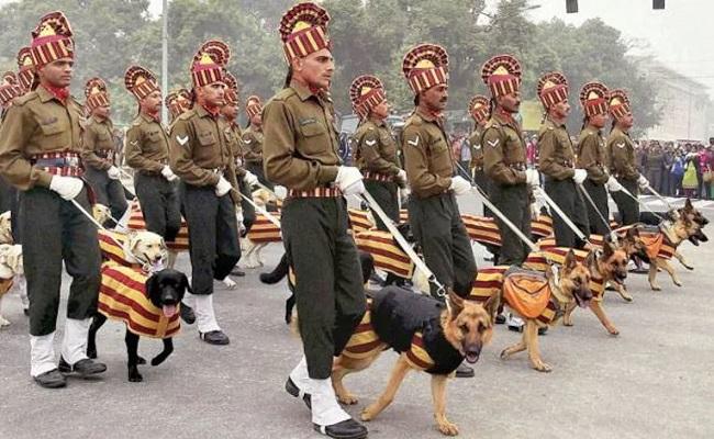 Indian Army Dog Squad: सुरक्षा बलों को खतरों से बचाते हैं, 'खोजी कुत्तों' की ये हैं खासियतें