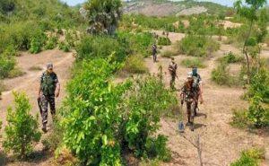 Jharkhand: लातेहार के जंगलों में नक्सलियों ने बिछाया था लैंडमाइन, विस्फोट की चपेट में आकर महिला की मौत