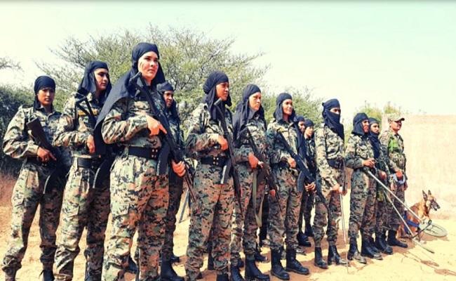 Lady Cobra Commandos