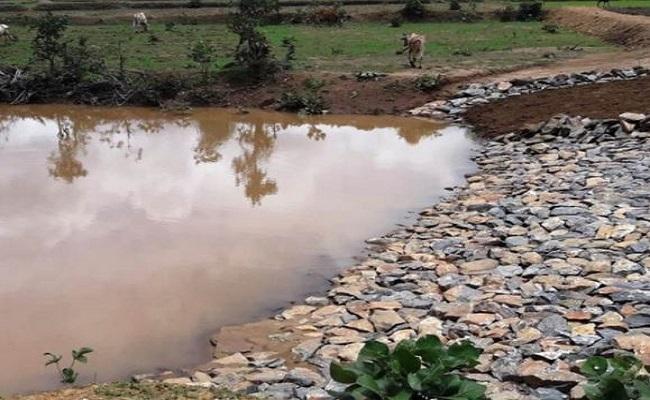 Chhattisgarh: राज्य में बड़े स्तर पर हो रहा भू-जल संरक्षण का काम, जल शक्ति मंत्रालय की ओर से मिला इनाम