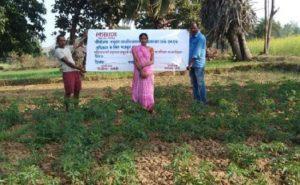 Bihar: गया के इस नक्सल प्रभावित इलाके की महिलाओं का कमाल, सामूहिक खेती कर बन रहीं आत्मनिर्भर