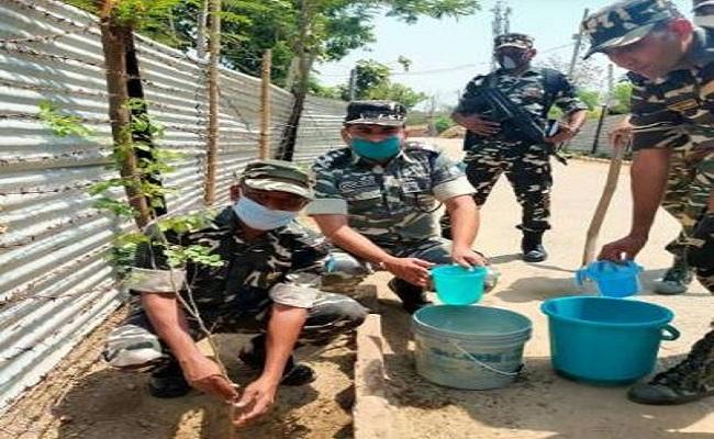 Bihar: सामाजिक चेतना अभियान के तहत SSB ने किया शिविर का आयोजन, गरीबों का मुफ्त में किया इलाज