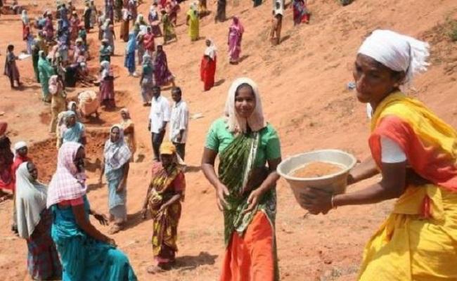 Chhattisgarh: मनरेगा के तहत रोजगार देने में राज्य ने बनाया रिकॉर्ड, पूरे देश में हासिल किया 5वां स्थान