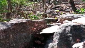 झारखंड: चतरा में नक्सलियों की बड़ी साजिश नाकाम, बरामद किए गए 4 केन बम