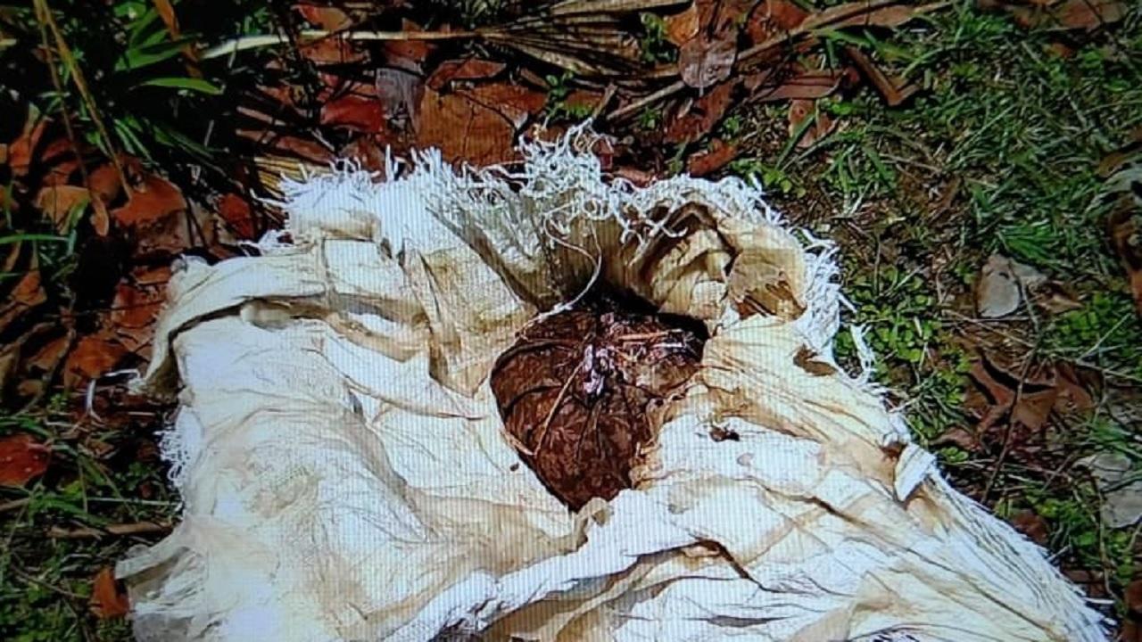 छत्तीसगढ़: सुकमा में नक्सलियों के खिलाफ बड़ी सफलता, 7 किलो IED बरामद, टली बड़ी घटना