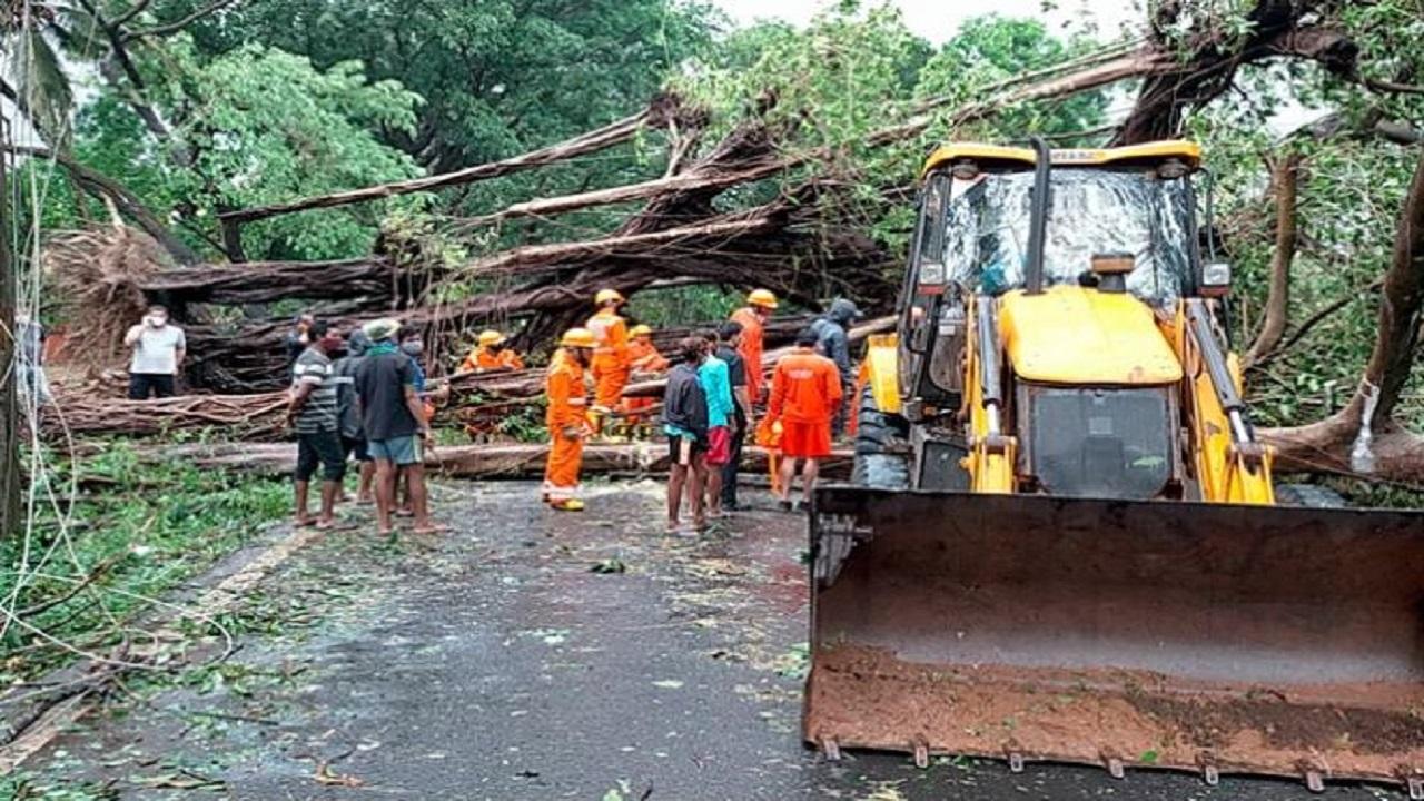 Cyclone Tauktae: महाराष्ट्र के बाद गुजरात में 'ताउते' ने मचाई भारी तबाही, राजस्थान में भी दिखा सकता है असर