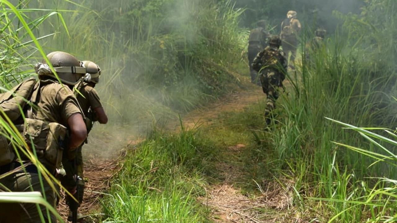 असम-नागालैंड सीमा पर सुरक्षाबलों को मिली बड़ी कामयाबी, DNLA के 8 आतंकियों को मुठभेड़ में मार गिराया